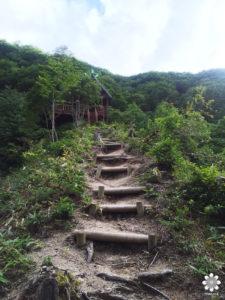 天岩戸 山道