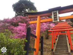 獅子崎稲荷神社