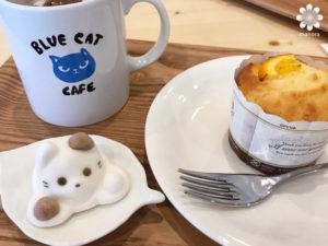 岡山猫カフェBLUE CAT CAFEマフィン