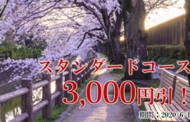 スタンダードコース3000円引!